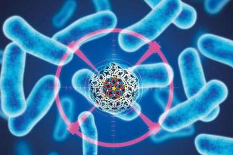 人造细菌能够超笑灭杀病毒细菌
