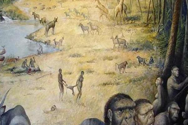 研究发现早期的人类竟是款热的昆虫捕食者