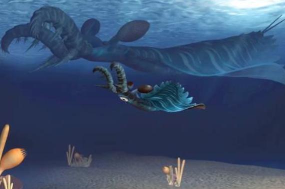 科学家发现5亿年前奇特物种