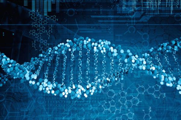 科学家研究发现基因或是决定人类成功与否的关键