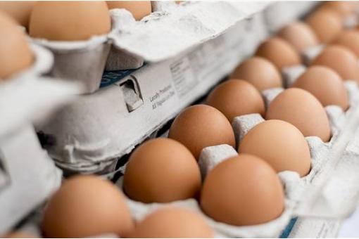 美国召回问题鸡蛋,疑被沙门氏菌所感染
