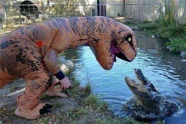 """男子假扮恐龙""""吓唬""""鳄鱼太闲了?"""