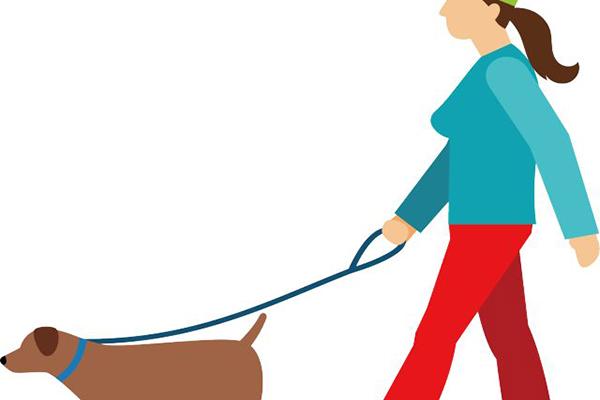 深圳养犬仍要登记