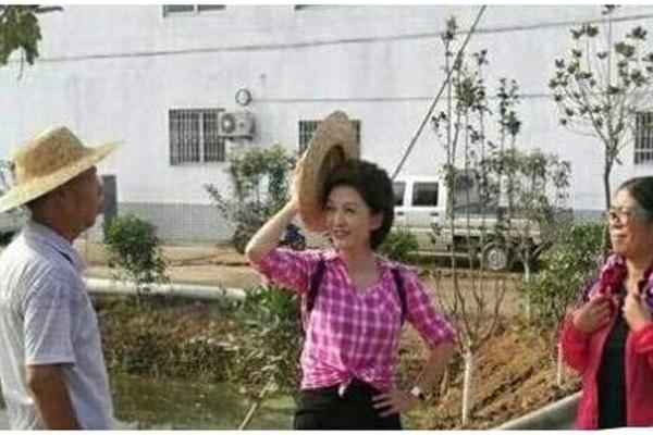 央视一姐海霞干农活,一姐气质犹在,职业女性的精神头让人佩服