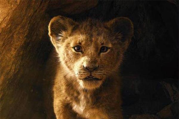 狮子王推出真人版,首支预告曝光走心细节