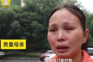 男童被狗咬身亡获赔78万,这笔钱安抚不了痛心无助的母亲