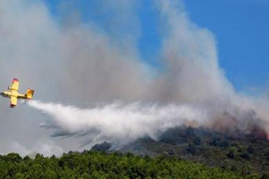 烧烤引发山火,意大利两名学生被罚2亿元