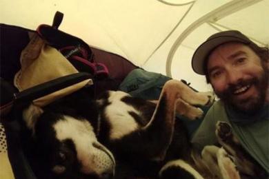 征服喜马拉雅山的狗,完全没有高原反应的样子