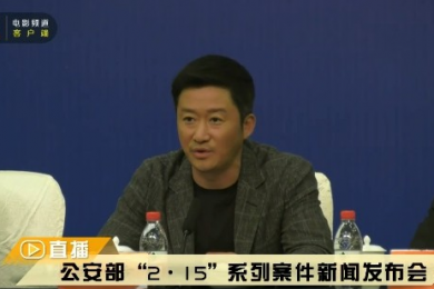 公安部破获春节档电影盗版案,抓捕251人涉案金额2.3亿