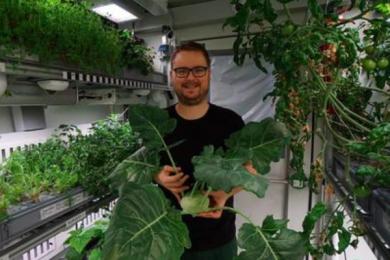 科学家成功在南极温室中培育出植物将来或可在火星培育
