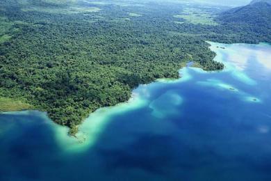 水文气候变化或导致物种灭绝