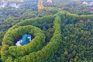 航拍南京美龄宫,秋季季节特性开始显现