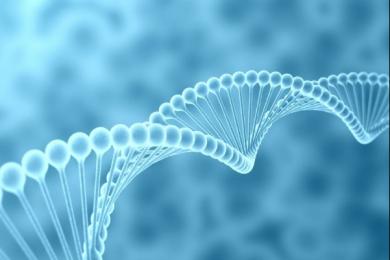 研究人员发现在美国超过半数的人可以通过DNA搜寻到