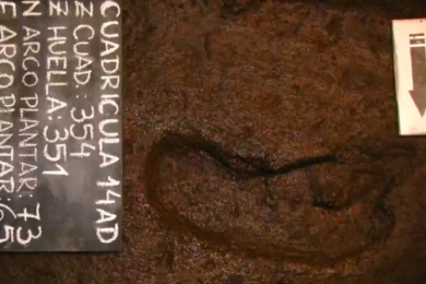 智利发现南美最古老人类脚印,距今超过1.56万年