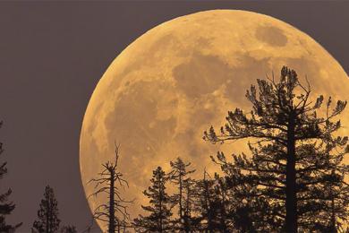 派遣人类定居月球,预计2028年之前让人类重?#32735;?#29699;