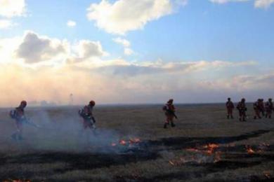 俄罗斯火灾引燃呼伦贝尔草原,目前明火已被扑灭